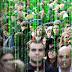 Fundador do Paypal choca céticos ao afirmar que estamos vivendo em uma simulação virtual como 'Matrix'