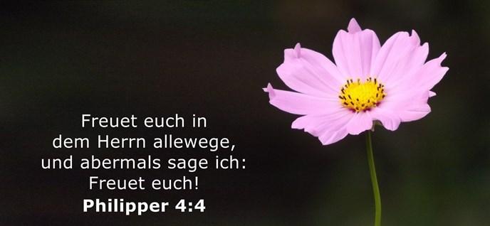 Freuet euch in dem Herrn allewege, und abermals sage ich: Freuet euch!