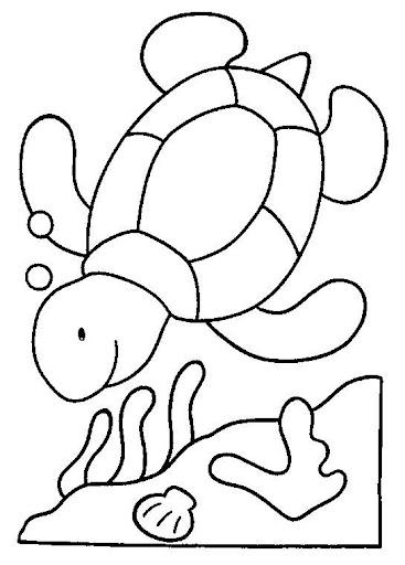 30 Desenhos De Tartaruga E Jabuti Para Colorir Espaco Educar