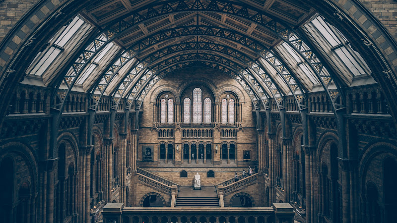 Inside Natural History Museum in London