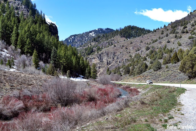 Driving through Logan Canyon