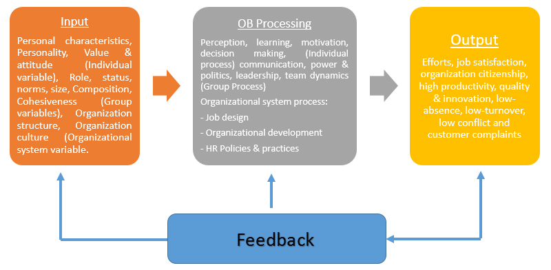 Project Management Levels of Organizational Behavior