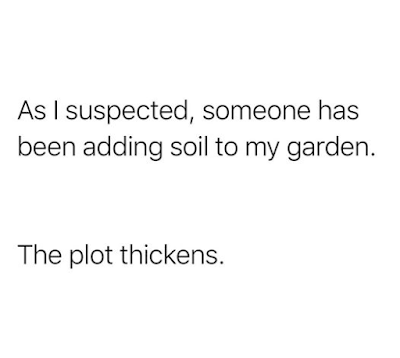 As I suspected, someone has been adding soil to my garden.  The plot thickens.