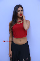 Telugu Actress Nishi Ganda Stills in Red Blouse and Black Skirt at Tik Tak Telugu Movie Audio Launch .COM 0092.JPG