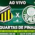 Jogo Novorizontino x Palmeiras Ao Vivo 23/03/2019