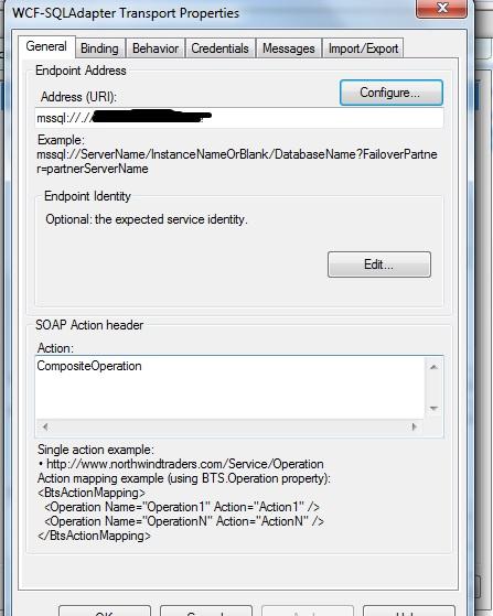 SQL adapter configuration