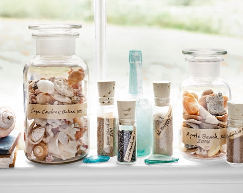 seashell collection in glass jar