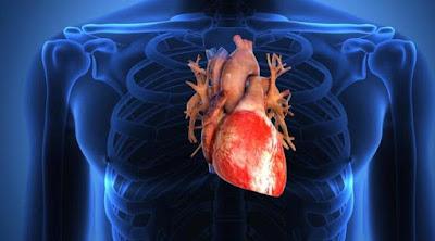 Tanda Jantung Anda Tak Bekerja dengan Normal