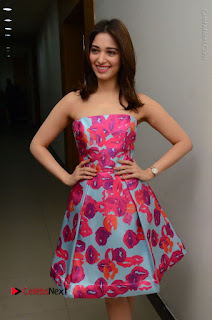 Actress Tamanna Latest Images in Floral Short Dress at Okkadochadu Movie Promotions  0052.JPG