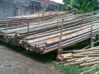 Harga bambu per batang terbaru :     Bambu petung panjang 7m-8m     RP. 170.000 / batang  Bambu