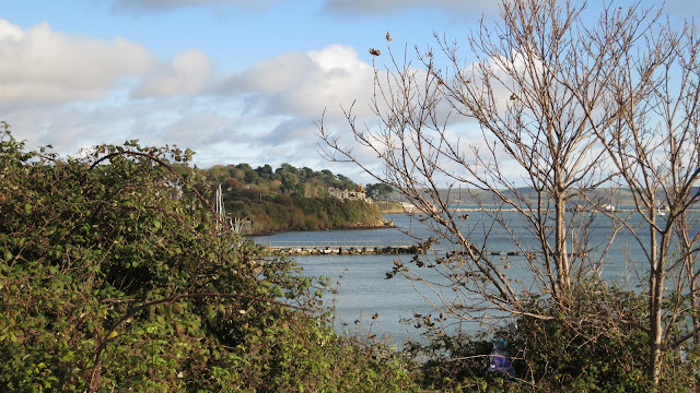 View of Sandsfoot Castle, Dorset, November 1st 2012