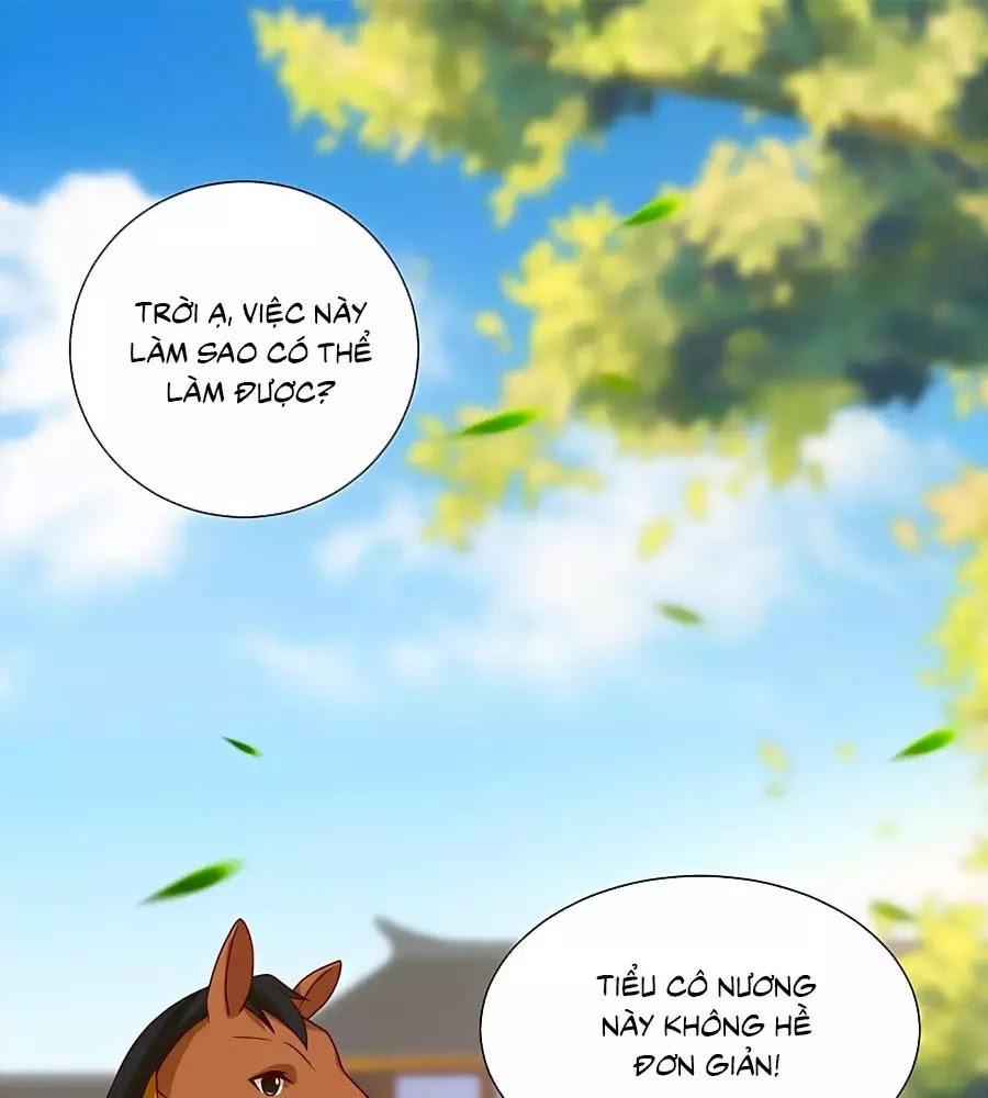 Quyền Phi Chi Đế Y Phong Hoa chap 9 - Trang 1