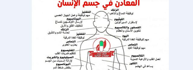 تعرف على انواع المعادن في جسم الانسان ودورها صحتنا