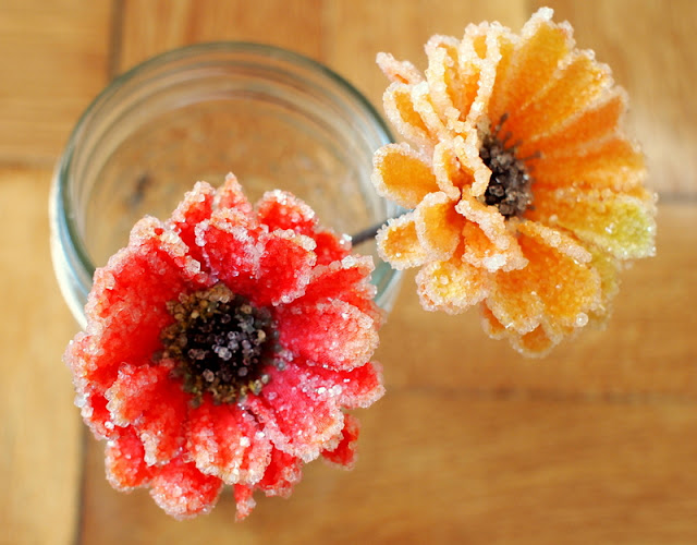 Make Borax Crystal Flowers | Pink Stripey Socks