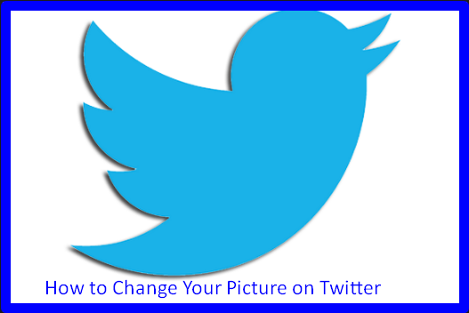 How to Change Your Picture on Twitter