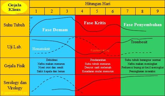 Berikut ini adalah grafik siklus dbd yang menyerupai pelana kuda