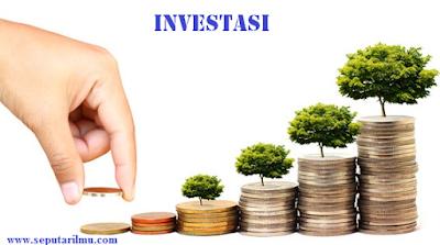 Pengertian, Jenis-Jenis Investasi, dan 6 Fakor Yang Mempengaruhi Investasi