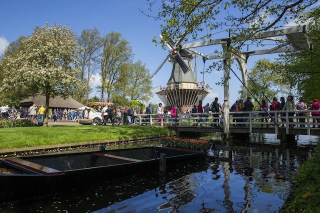 Keukenhof - Holanda