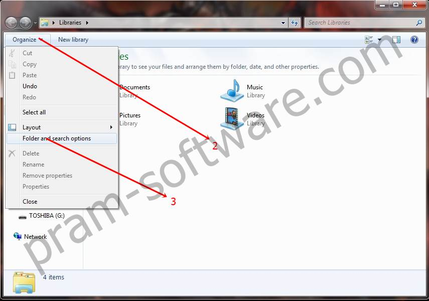 Organize di Windows 7