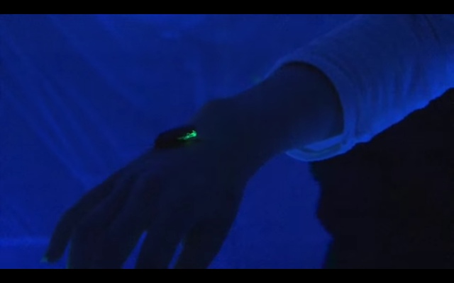 閲覧注意‼︎光るゴキブリのインスタレーションアート【Art】
