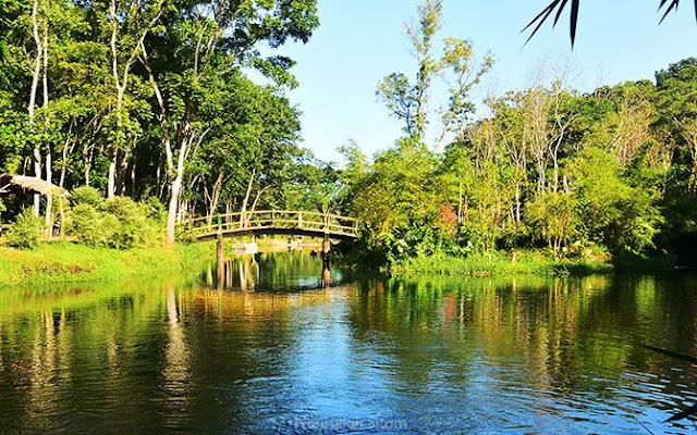 Jembatan di Danau Andeman Sanankerto
