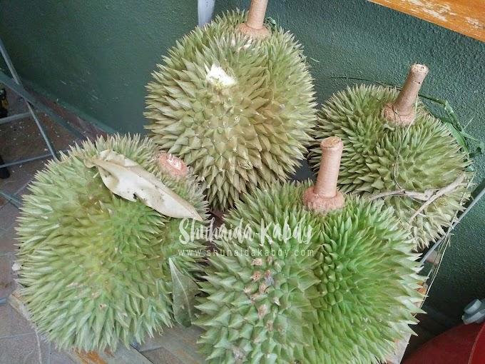 Durian Dari Tanjung Keramat