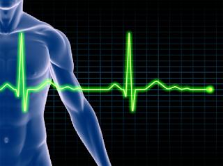 Apakah Detak Jantung Anak Anda termasuk Normal?