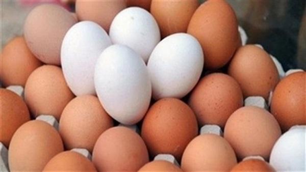 """أسعار البيض """"مستقرة"""" اليوم الأحد.. و""""الكرتونة"""" تسجل 37 جنيهًا"""