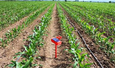 Geabit: Η τεχνητή νοημοσύνη στην γεωργία