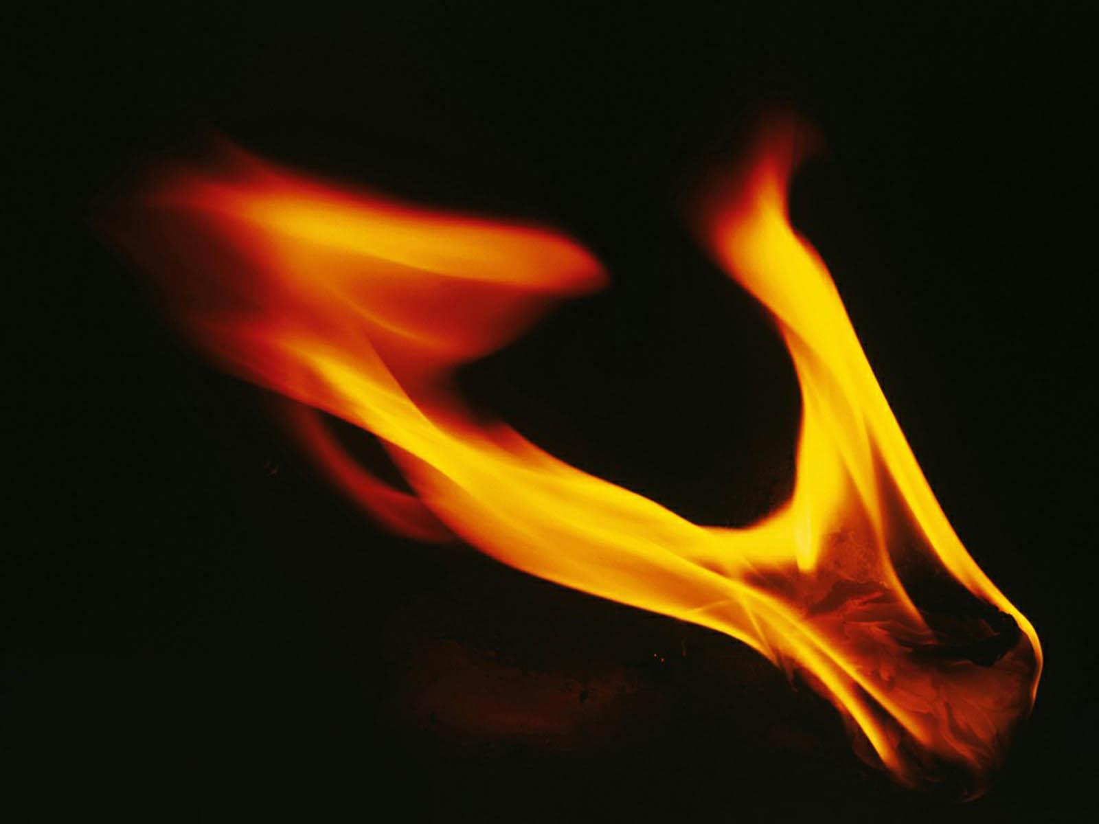 Fire Wallpaper Pc: Wallpaper: Fire Wallpapers