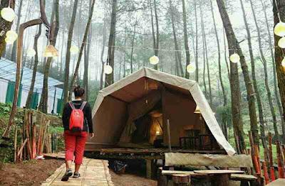 glamorous glaming de'loano, wisata perkemahan gaya nomadic, tempat wisata hits dan kekinian, wisata bukit menoreh, wisata jawa tengah yang instagramable