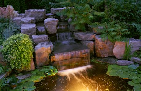 Koi Fish Care Info Make Pond Shine With Lighting