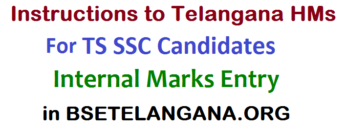 Instructions / User Manual, Procedure to Telangana Head Masters forTS SSC  Internal Marks Entry on BSETELANGANA.ORG Web Portal, Guidelines for feeding of Internal Marks in the official portal, Procedure for working out the Formative Tests Marks and Co-Curricular Tests,