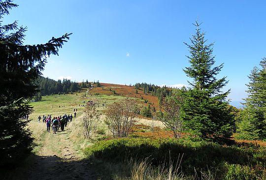 Przełęcz Kucałowa.