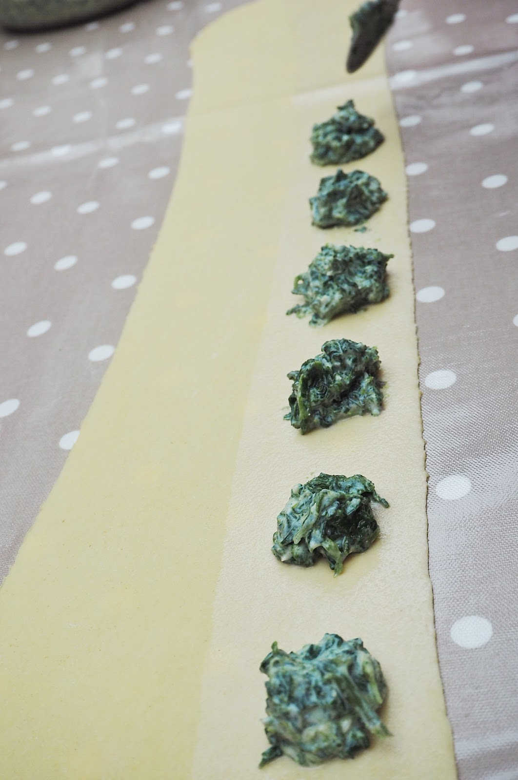 Italian homemade pesto ravioli filling
