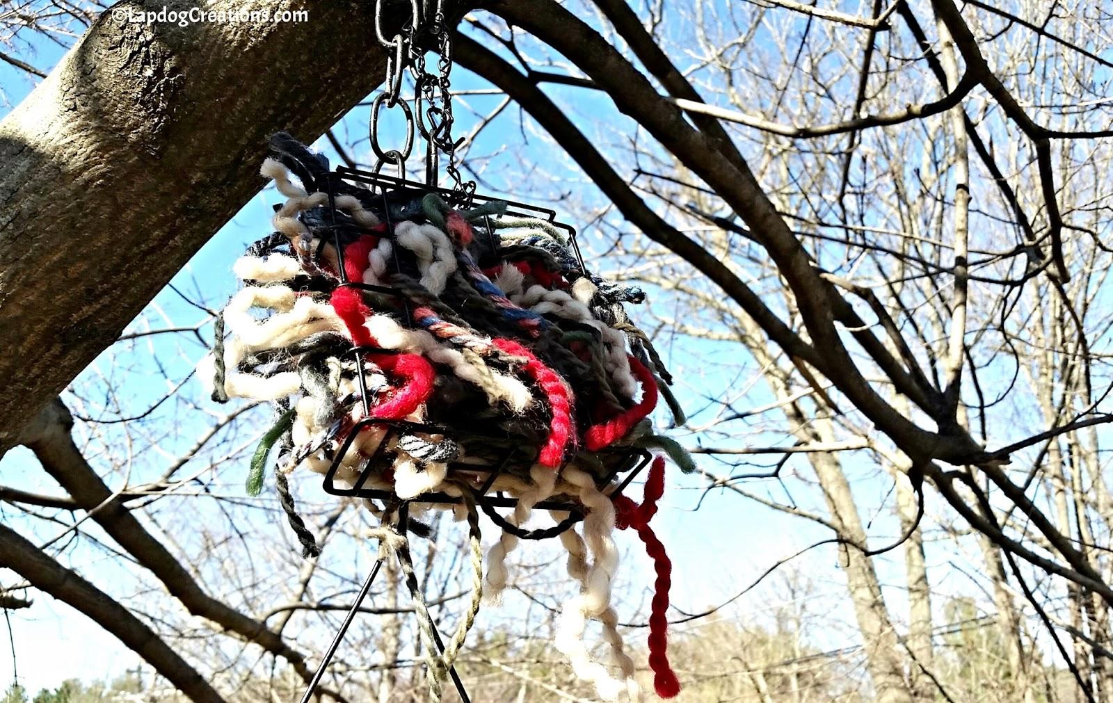 yarn clippings for birds - HD1600×1011