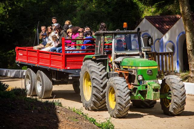 passeio em transporte tradicional na Festa dos Maios-Quinta do Pisão