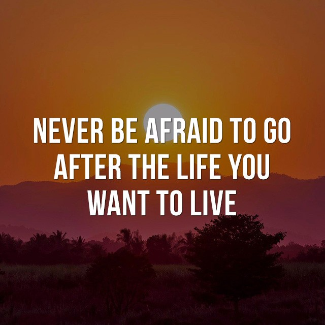 Never be afraid to go after the life you want to live. - Positive Quotes