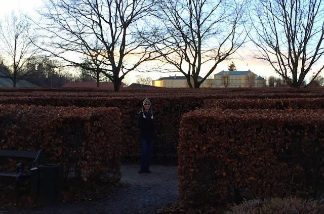 Copenhagen in November