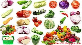 """""""organic vegetable"""",""""organic vegetable gardening"""",""""start organic vegetable garden"""""""