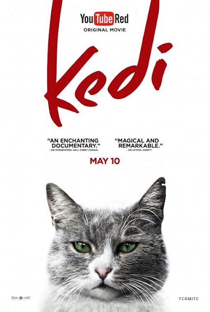 Kedi (2016) ταινιες online seires oipeirates greek subs