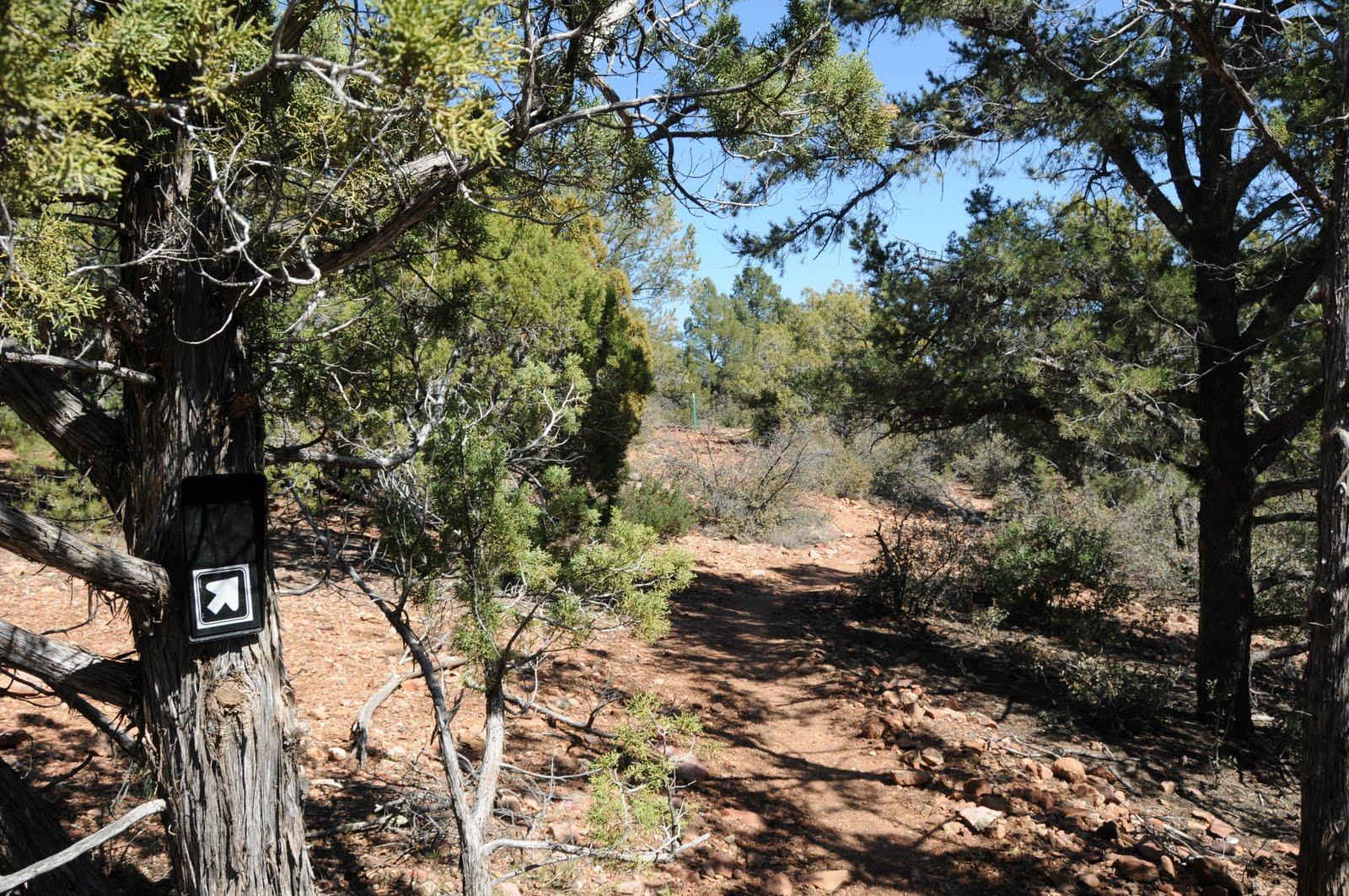 Arizona Hiking: GOAT CAMP RUINS