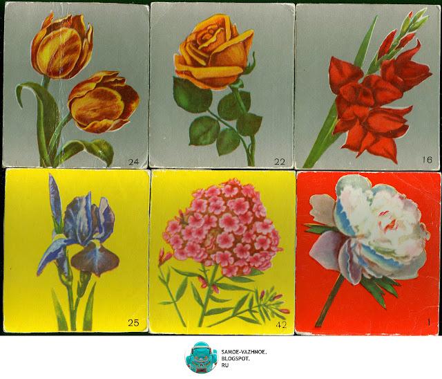 Игры с карточками для детей СССР.  Цветут цветы игра СССР Файнштейн Минаева 1981, 1985, 1990, 1991.