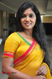 Usha Jadhav Stills in Saree at Veerappan Movie Pressmeet  0057