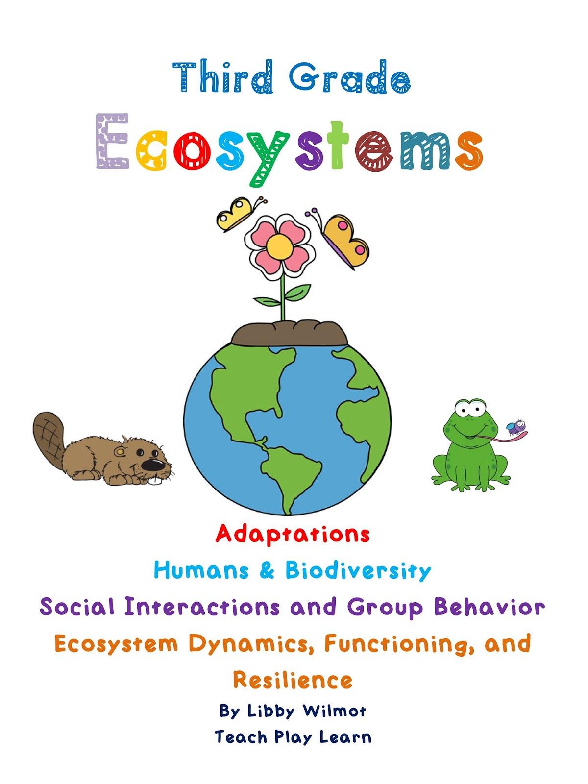 Teach Play Learn Third Grade Ecosystems