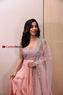Bollywood Actress Model Sophie Choudry Stills in a Beautiful Dress at The Annual Central Excise Day Celetion  0006.jpg