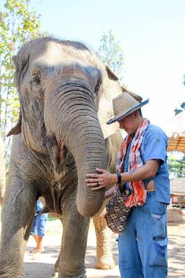 Chiang Mai, Thailand: Maerim Elephant Sanctuary