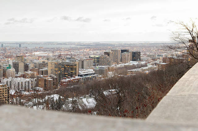 city view from Mount Royal Park in Montréal, Canada