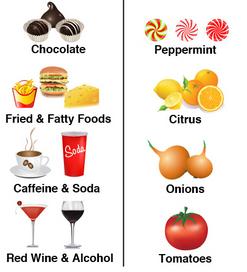 alimentos para aliviar el reflujo gastroesofagico