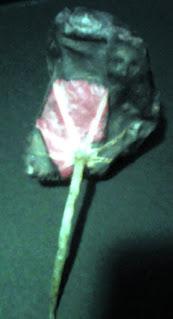 frunza uscata cu iluzia unei imagini cap de om